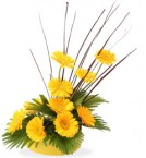 send yellow gerberas beautiful bouquet delivery