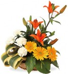 send orange lilies yellow gerberas and white carnations arrangement delivery