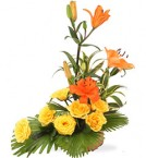 send Paradise Carnation Yellow Lilies all in one  delivery
