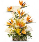 send  beautiful paradise bouquet one delivery
