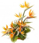 send  beautiful paradise designer bouquet two delivery