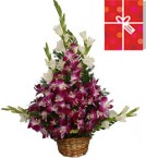send beautiful basket of Orchids n greeting card delivery