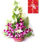 send Orchids Special Arrangement with greeting card delivery