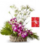 send Arrangement of orchids with carnations and greeting card delivery