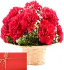 send Red Carnations Basket with Greeting Card delivery