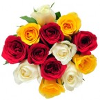send 12 mix roses bunch delivery