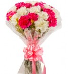 send pink and white carnations bouquet  delivery