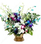 send Mix Orchid Basket  delivery