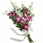 send Mix Orchid Delight delivery