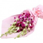 send Exotic Purple Orchid delivery