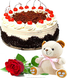 single rose black forest cake and teddy
