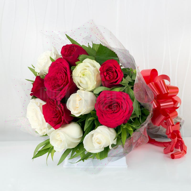 Soft and Fierce Red and White Roses