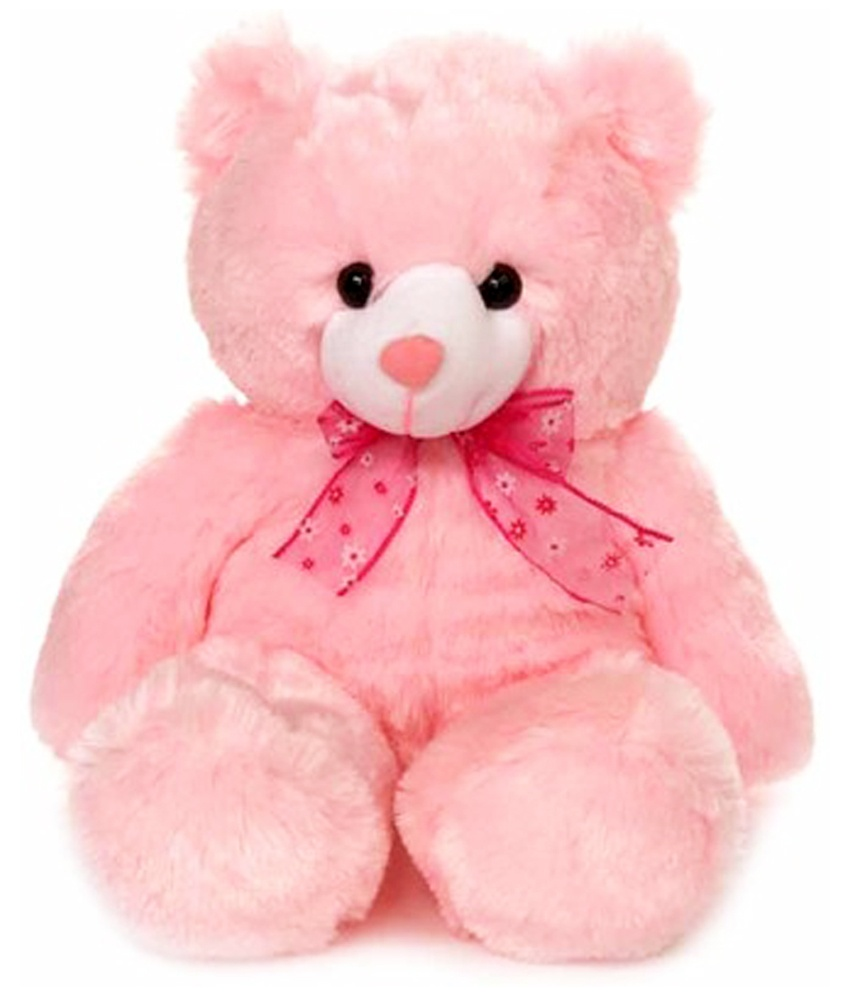 Big Pink Teddy