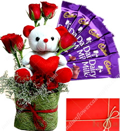 Teddy Chocolate With Red Roses Flower
