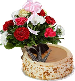 Eggless Butterscotch Cake Half Kg N Carnations Basket