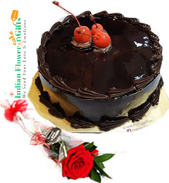 1Red Rose  n Chocolate truffle cake Half Kg